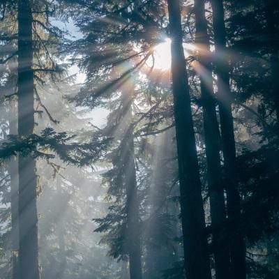 Les forêts Groupama au cœur de l'émission Tambour Battant